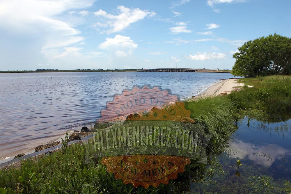 Shoreline along the Lemon Bay/Myakka Scenic Trail in Englewood, Florida. (AP Photo/Alex Menendez) Florida scenic highway photos from the State of Florida. Florida scenic images of the Sunshine State.