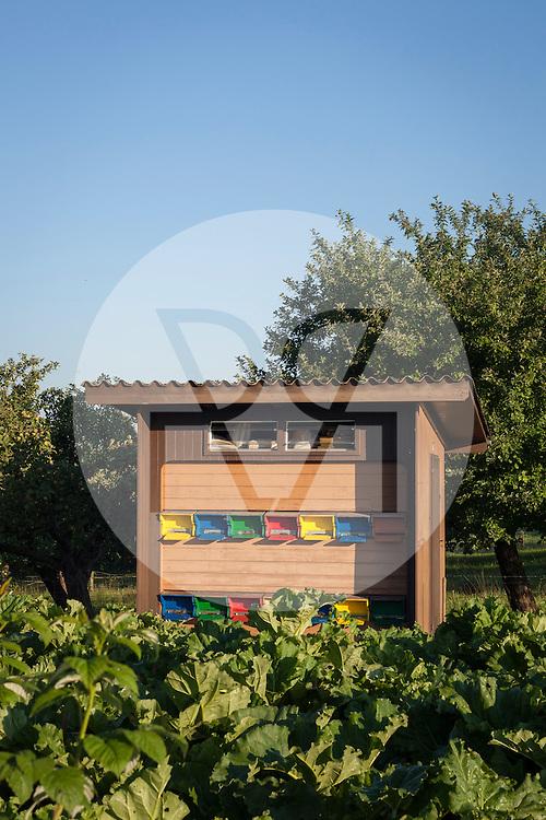 SCHWEIZ - MEISTERSCHWANDEN - Bienenhaus in der Morgensonne - 17. Juli 2015 © Raphael Hünerfauth - http://huenerfauth.ch