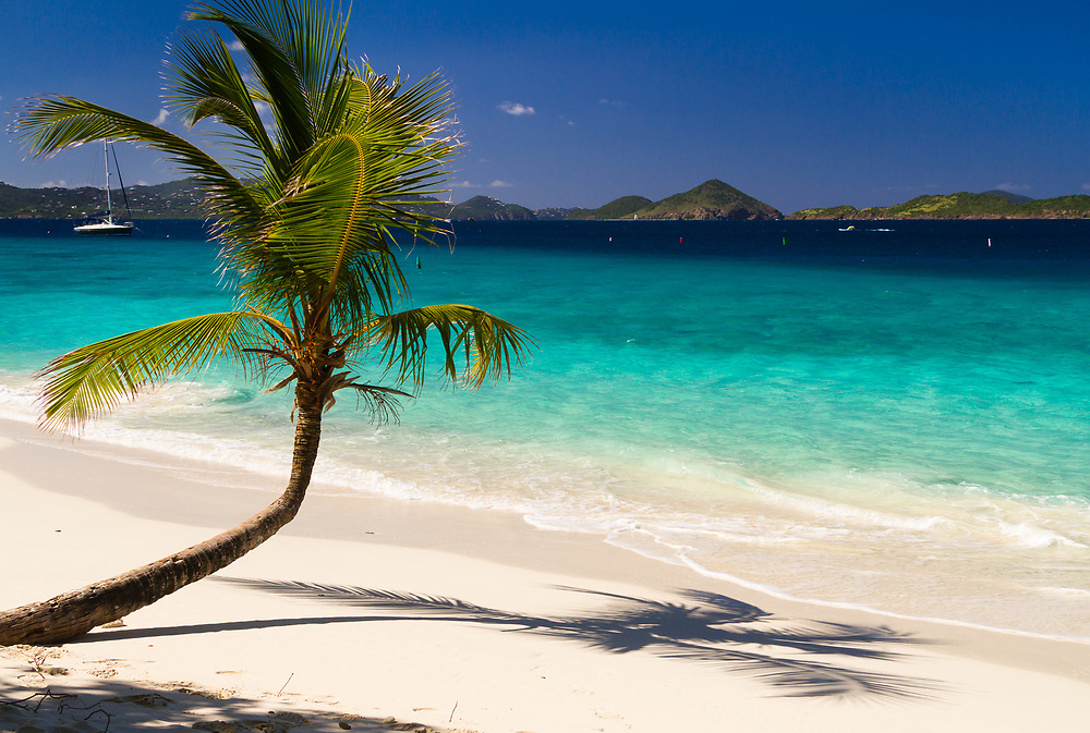Gorgeous Honeymoon Bay on the northwest side of St. John, US Virgin Islands within Virgin Islands National Park. Palm trees curving perfectly toward the water as close as they can get to the Caribbean Sea. St. Thomas in the background to the left and a line of cays to the right.