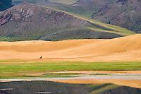 Mongolie, province de Zavkhan, lac Noir, cavalier mongol // Mongolia, Zavkhan province, Khar Nuur lake, horserider