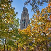 New England fall foliage framing the iconic Harkness Tower at Yale University in New Haven, Connecticut. <br />