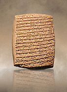 Hittite cuneiform tablet. Adana Archaeology Museum, Turkey. .<br /> <br /> If you prefer to buy from our ALAMY STOCK LIBRARY page at https://www.alamy.com/portfolio/paul-williams-funkystock/hittite-art-antiquities.html . Type - Adana - in LOWER SEARCH WITHIN GALLERY box. Refine search by adding background colour, place, museum etc.<br /> <br /> Visit our HITTITE PHOTO COLLECTIONS for more photos to download or buy as wall art prints https://funkystock.photoshelter.com/gallery-collection/The-Hittites-Art-Artefacts-Antiquities-Historic-Sites-Pictures-Images-of/C0000NUBSMhSc3Oo