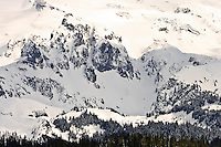 Mount Rainier in winter as viewed from the Mount Tahoma Trails cross-country ski trail system.