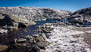Colby Sawyer students participate in the field studies course studing Alpine Communities on Mount Washington