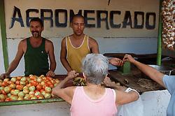 Farmers' market in Vedado; Havana; Cuba; with vegetables for sale,