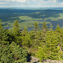 Spruce forest on Moxie Bald Mountain. Bald Mountain Pond is in the distance. Appalachian Trail. Bald Mountain Township, Maine.