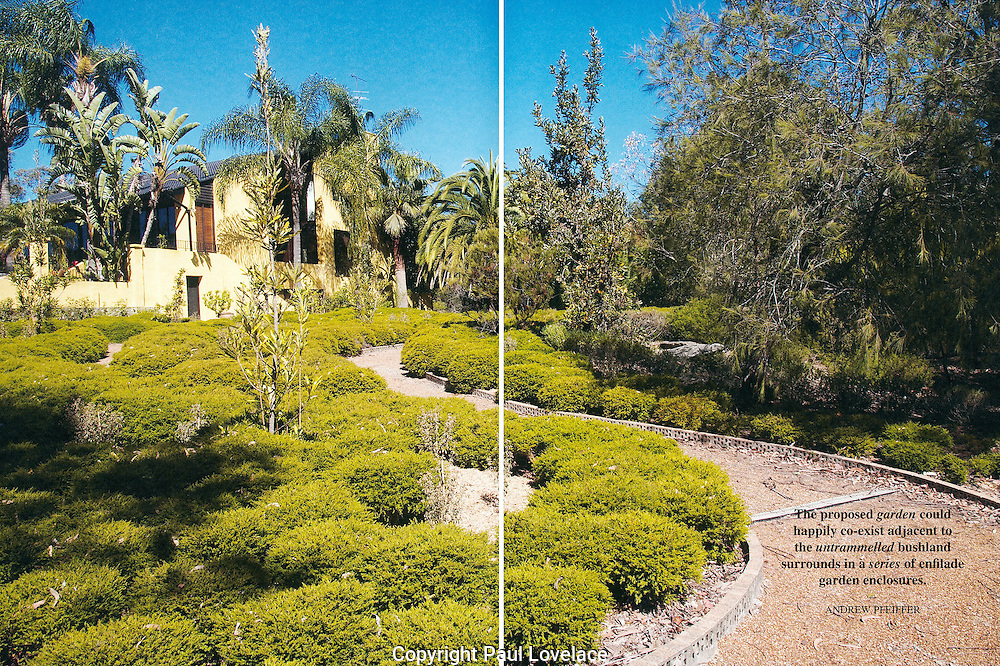 Rembel garden feature, NSW.