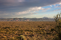 Bush land with mountain range in the background, Oudtshoorn, Oudtshoorn, Western Cape Province, South Africa