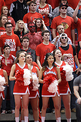 28 January 2015:   No nylon stretch suit required, this student fan dons red paint, sunglasses, hair dye and sparkles during an NCAA MVC (Missouri Valley Conference) men's basketball game between the Missouri State Bears and the Illinois State Redbirds at Redbird Arena in Normal Illinois