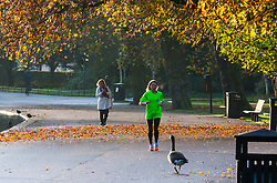 Regent's Park, London, November 4th 2014. A runner makes her way through London's autumnal Regents Park.
