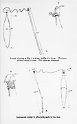 Weapons and hunting tools From the book '  Specimens of Bushman folklore ' by Bleek, W. H. I. (Wilhelm Heinrich Immanuel), Lloyd, Lucy Catherine, Theal, George McCall, 1837-1919 Published in London by  G. Allen & Company, ltd. in 1911. The San peoples (also Saan), or Bushmen, are members of various Khoe, Tuu, or Kx'a-speaking indigenous hunter-gatherer groups that are the first nations of Southern Africa, and whose territories span Botswana, Namibia, Angola, Zambia, Zimbabwe, Lesotho and South Africa.