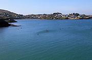 Empty moorings out of season Coney island, Baltimore,  County Cork, Ireland, Irish Republic