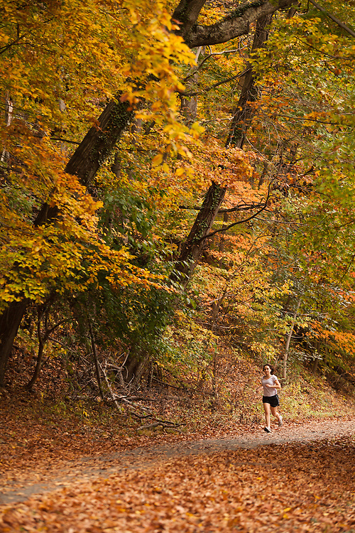 A woman runs on a wooded trail in Rock Creek Park in Washington DC under Autumn leaves.