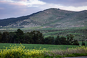 Jezreel Valley landscape, Israel. Mount Gilboa in the Background