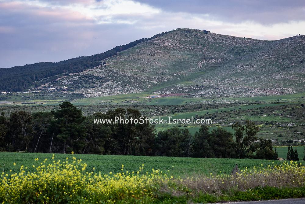 Jezreel Valley landscape, Israel. Mount Gilboa in the Background