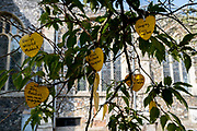 The names of local parish covid-19 victims hang from the branches of a tree outside St. Michaels C of E church, during the Coronavirus pandemic, on 13th August 2020, in Beccles, Suffolk, England.