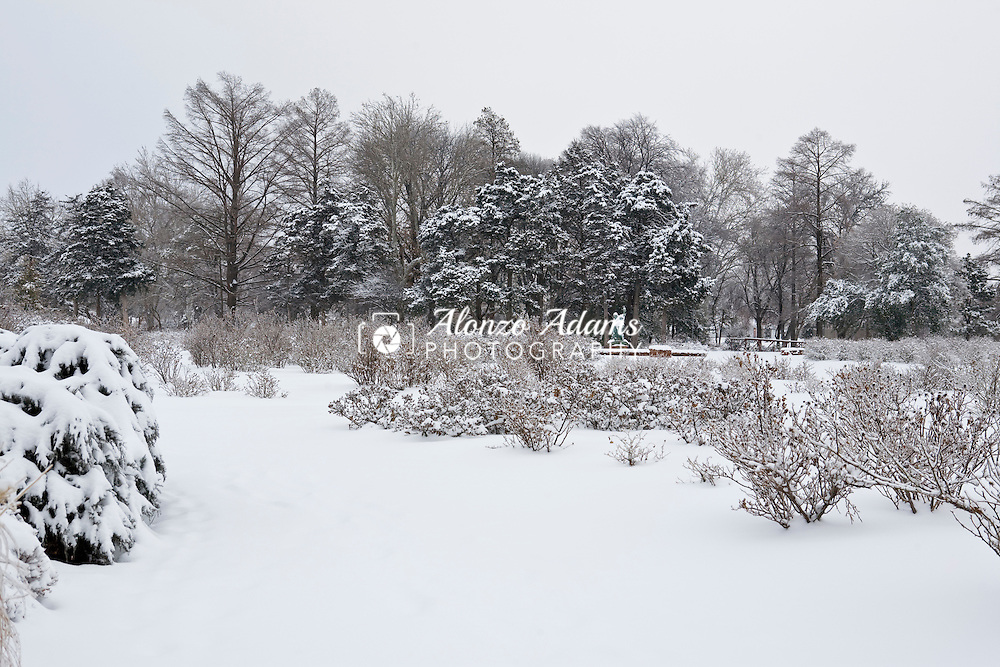 A city park is covered in snow in Oklahoma City, OK. on Saturday, January 30, 2010 after a winter storm brought ice and snow to the area.  (Photo by Alonzo J. Adams)