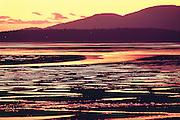 intense sunset over low tide and mud flats, Samish Bay, Washington State