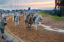 Basombrio Manuela, ARG, HSB Tapioca<br /> World Equestrian Games - Tryon 2018<br /> © Hippo Foto - Dirk Caremans<br /> 12/09/2018
