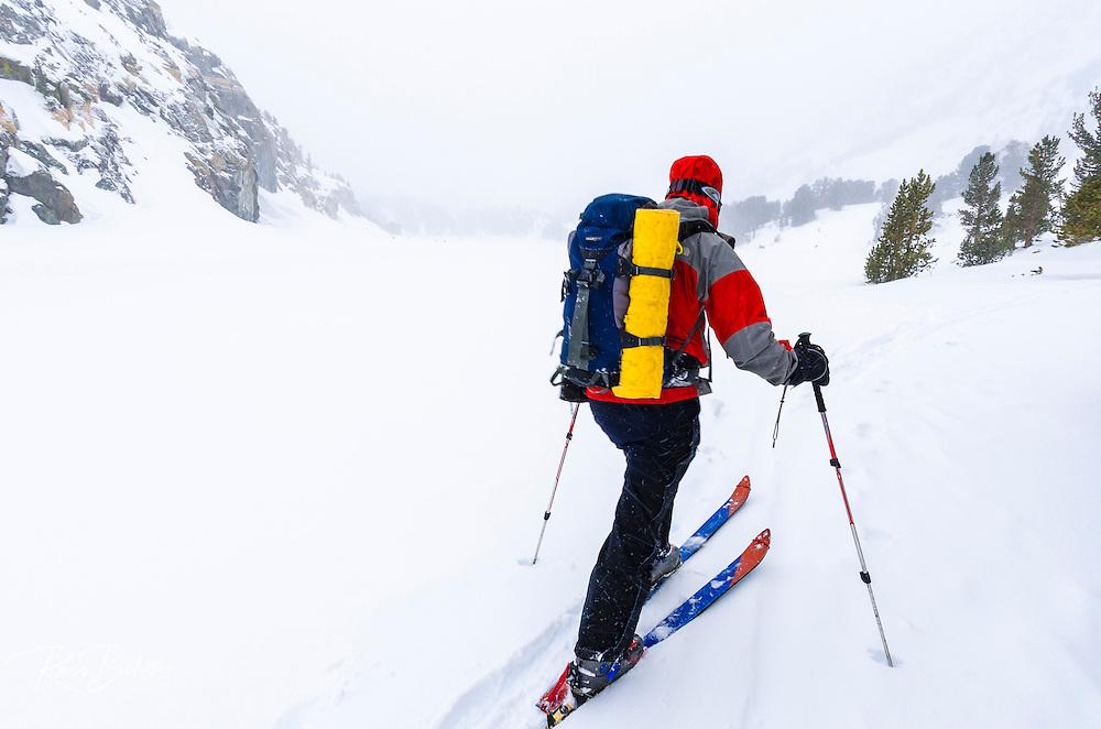 Backcountry skier in a white-out, John Muir Wilderness, Sierra Nevada Mountains, California  USA