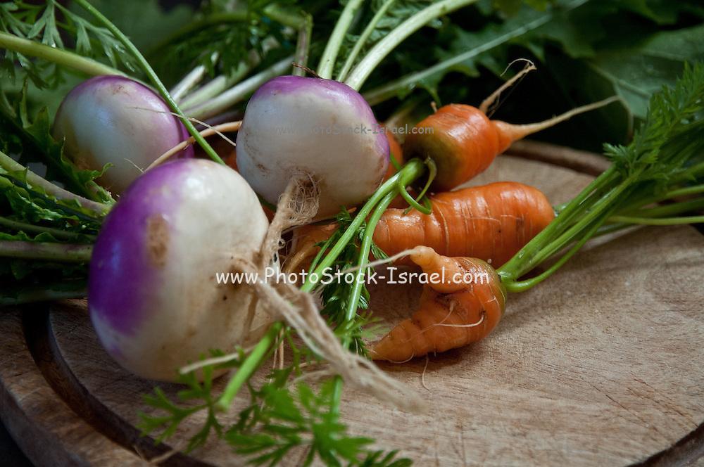 Home grown organic Turnips and carrots