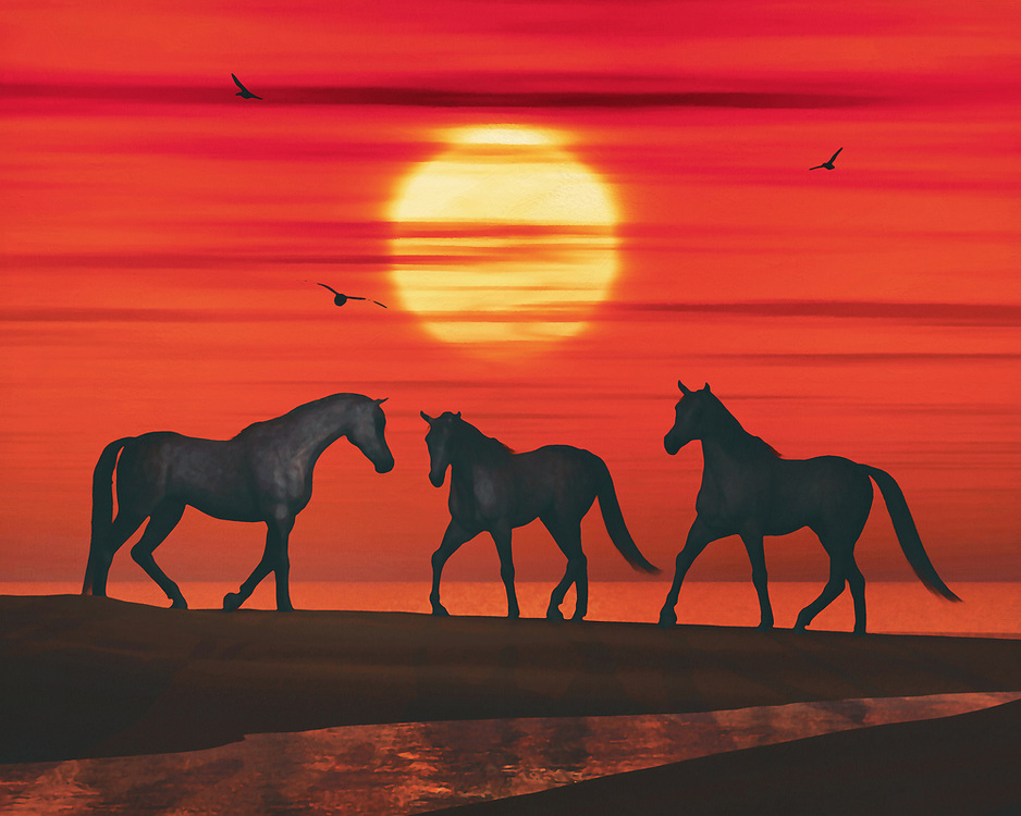 Three horses on the beach are stepping towards each other. It is sunset and a few clouds hang in front of the sun while a few seagulls cross the red evening sky. This attractive work can be purchased in various materials and formats. –<br /> -<br /> BUY THIS PRINT AT<br /> <br /> FINE ART AMERICA / PIXELS<br /> ENGLISH<br /> https://janke.pixels.com/featured/three-horses-walk-towards-each-other-on-the-beach-jan-keteleer.html<br /> <br /> <br /> WADM / OH MY PRINTS<br /> DUTCH / FRENCH / GERMAN<br /> https://www.werkaandemuur.nl/nl/shopwerk/Drie-paarden-lopen-naar-elkaar-toe-op-het-strand/801651/132?mediumId=1&size=70x55<br /> –<br /> -