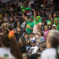 Newcomb Skyhawks fans cheer on their team during their 2A girls NMAA State Basketball quarterfinal playoff game against Clayton Yellowjackets at the Santa Ana Star Center in Rio Rancho Tuesday. The Yellowjackets beat the Skyhawks 63-51 to advance to the semifinal round.