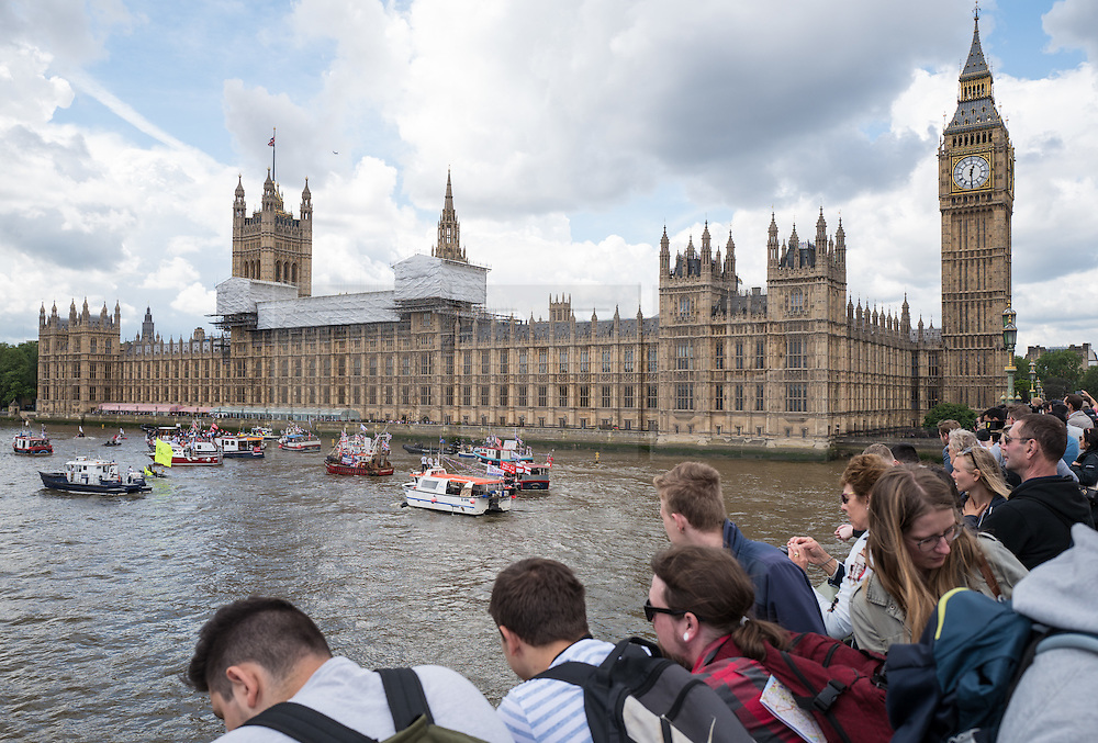 © Licensed to London News Pictures. 15/06/2016. London, UK. People watch from Westminster Bridge as a flotilla of fishing trawlers led by UKIP leader Nigel Farage arrives at Westminster. The flotilla is organised by the 'Fishing for Leave' campaign, founded by Scottish fisherman, which argues that the UK's fishing industry would be better off outside the EU, but with the same status as Iceland or Norway when fishing quotas are negotiated. Photo credit: Rob Pinney/LNP