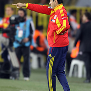 Romania's head coach Civtor Piturca during their FIFA World Cup 2014 qualifying soccer match Turkey betwen Romania at Sukru Saracoglu stadium in Istanbul october 12, 2012. Photo by TURKPIX