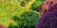Garden at Huntting Ln, East Hampton, NY