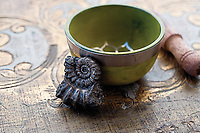 The heart chakra, or Anahata in its original Sanskrit name, colors our life with compassion, love, and beauty. Pyrite Ammonite Nautilus fossil.