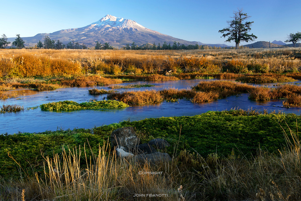 Autumn View of Mt. Shasta at Sunset from Shasta-Big Springs, Preserve, operated by The Nature Conservancy