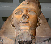 Upper part of a seated statue of Ramses II. 19th Dynasty (approx. 1270 BC) Egyptian. Taken from the Ramesseum, western Thebes. Made of two-colour Granite.