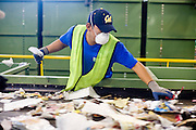 12 MARCH 2007 -- PHOENIX, AZ: OSCAR LOPEZ sorts recyclable paper products at the new recycling center in the city of Phoenix, AZ. The center opened in February 2007 and is the most modern recyclables processing center in the US. The center is operated by Hudson Baylor Corporation and processes about 1000 tonnes of recyclables a week.  Photo by Jack Kurtz/ZUMA Press