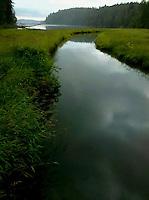 Stavis Creek flows into Stavis Bay on the Hood Canal of Puget Sound, Washington state, USA