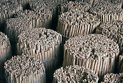 Cinnamon quills, packed and ready for shipping at a warehouse.