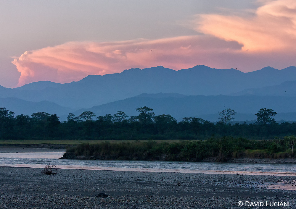 """According to """"Wikipedia"""" - Chitwan National Park is the first national park in Nepal. Formerly called Royal Chitwan National Park it was established in 1973 and granted the status of a World Heritage Site in 1984. It covers an area of 932 km2 (360 sq mi) and is located in the subtropical Inner Terai lowlands of south-central Nepal in the Chitwan District."""