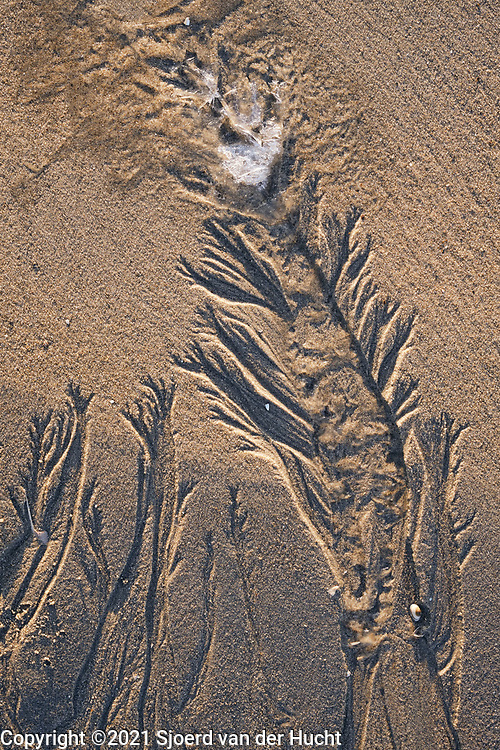 Natuurlijke zandsculpturen op het strand.   Natural sand sculptures on the beach.