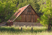Horse Barn From Spring Pasture, Stone Wall, Tall Grass, Barbed Wire Fence, Shade Trees, Genesee Valley Ranch, California Barns