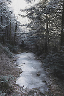 Frozen water on the Appalachian Trail on Roan Mountain on a cold winter day.<br />(December 15, 2016)