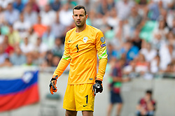 Samir Handanovic of Slovenia during the EURO 2016 Qualifier Group E match between Slovenia and England at SRC Stozice on June 14, 2015 in Ljubljana, Slovenia. Photo by Mario Horvat / Sportida