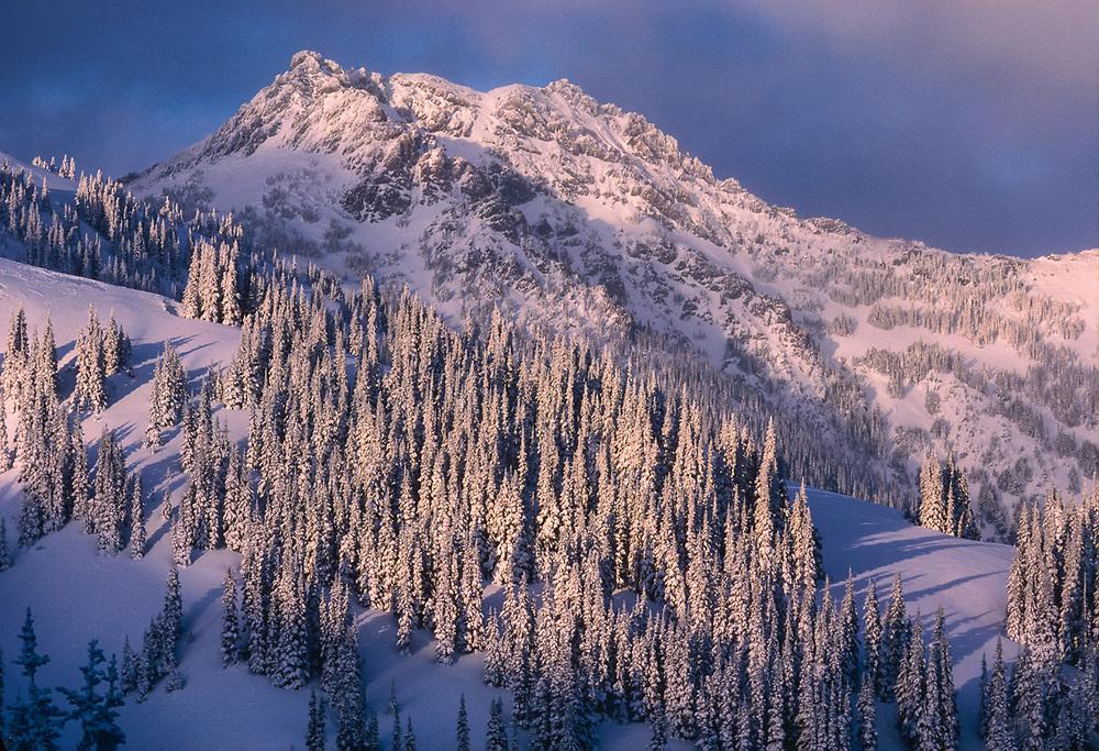 Mount Angeles, evening light, winter, Olympic National Park, Washington, USA