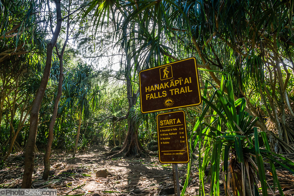 Signs where Hanakapiai Falls Trail branches from Kalalau Trail, on Na Pali Coast, Kauai, Hawaii, USA. A beautiful day hike along the slippery Kalalau Trail goes from Ke'e Beach to Hanakapiai Beach, with a rougher side trip to impressive Hanakapiai Falls, in Na Pali Coast State Wilderness Park on the island of Kauai. To reach Hanakapiai Valley's waterfall, follow the signed clay trails for a moderately strenuous 8.8 miles round trip with 2200 feet cumulative gain (measured on my GPS), and bring plenty of fresh water. I recommend boots with sturdy tread, hiking poles, plus water shoes for the several stream crossings. Arrive early to get parking at the trailhead in Haena State Park at the end of the Kuhio Highway (Hawaii Route 560). The gorgeous Kalalau Trail was built in the late 1800s to connect Hawaiians living in the remote valleys. No permit is needed for day hiking to Hanakapiai Falls. But hikers going onwards from Hanakapiai Beach to Hanakoa and Kalalau Valleys require a camping permit from the Hawaii Department of Land and Natural Resources (HDLNR).