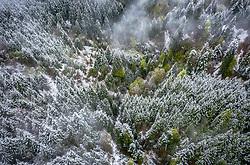 THEMENBILD - ein teilweise mit schnee bedecktes Waldgebiet in den Bergen, aufgenommen am 28. April 2019 in Kaprun, Oesterreich // a partly snow-covered forest area in the mountains in Kaprun, Austria on 2019/04/28. EXPA Pictures © 2019, PhotoCredit: EXPA/ JFK