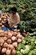 Fruit / Veg vendor, Rantepao, Sulawesi, Indonesia