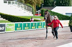 Schnarre Carolin, (GER), Del Rusch<br /> Alltech FEI World Equestrian Games™ 2014 - Normandy, France.<br /> © Hippo Foto Team - Jon Stroud<br /> 25/06/14