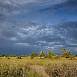 Perto das Salinas do Mussulo numa tarde de verão depois da chuva.