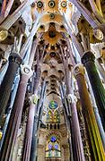 Nave interior, Basilica Sagrada Família, Barcelona, Spain