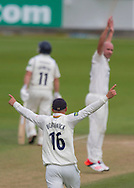 Scott Borthwick (16) and bowler Chris Rushworth (Durham County Cricket Club) celebrate the wicket of Laurie Evans (Warwickshire County Cricket Club) during the LV County Championship Div 1 match between Durham County Cricket Club and Warwickshire County Cricket Club at the Emirates Durham ICG Ground, Chester-le-Street, United Kingdom on 15 July 2015. Photo by George Ledger.