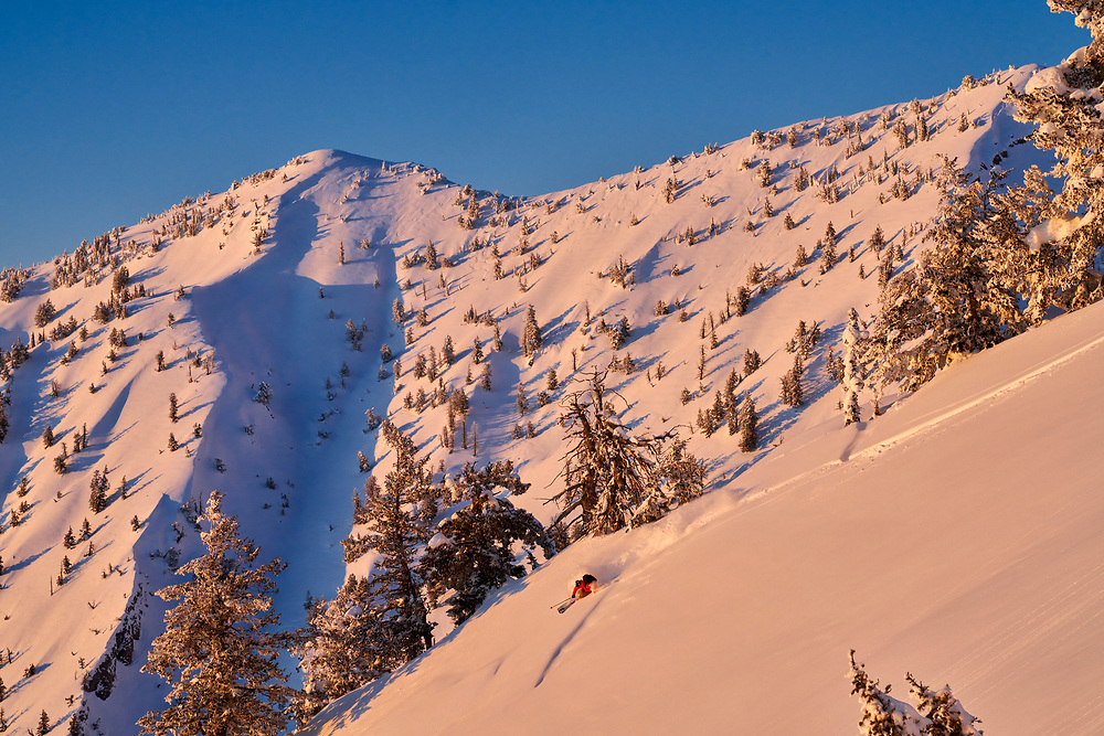 """The first time Forrest Jillson and I skied this area, he said, """"This is private as fuck."""" -- except for the 4 moose that chased us down like angry dogs and the red fox that poached our line getting first tracks for himself."""